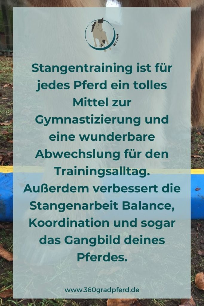Stangentraining hilft deinem Pferd dabei, seine Koordination zu verbessern