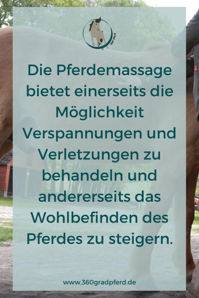 Gute Gründe für die Pferdemassage