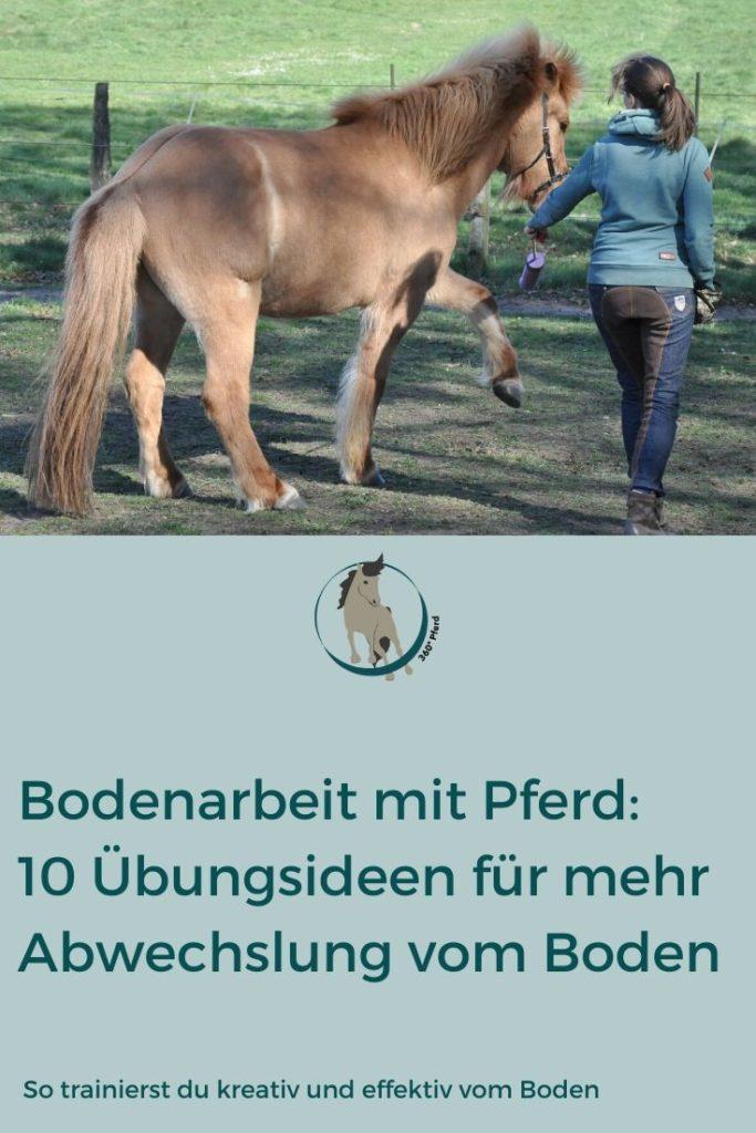 Kreative Übungen für die Bodenarbeit mit Pferd