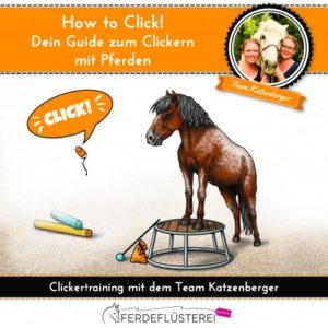 Onlinekurs How to Clicker