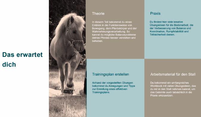 Onlinekurs Mehr Balance für dein Pferd