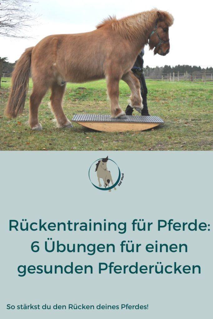 Rückentraining-Pferd sechs Übungen für einen starken Rücken