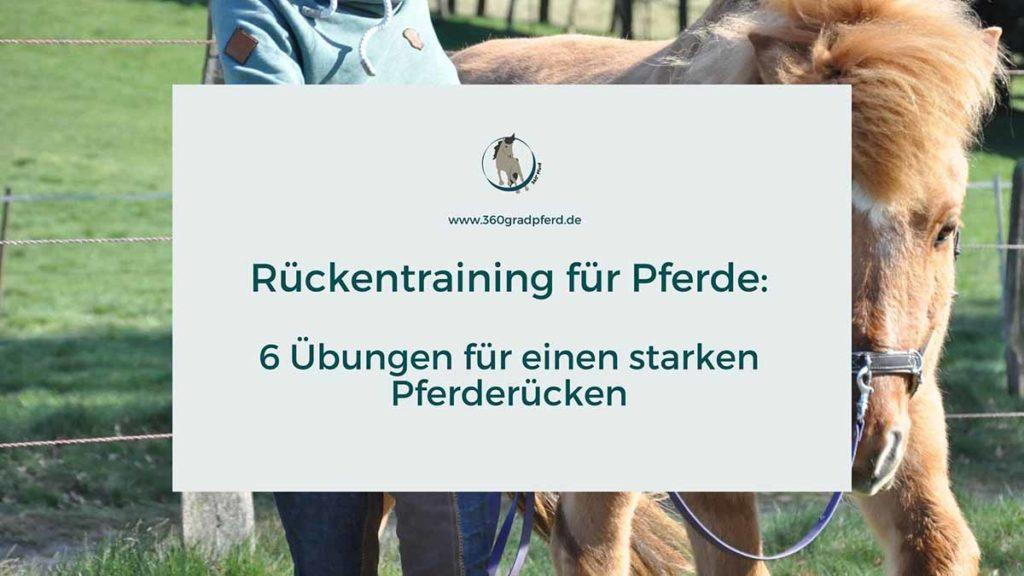 Rückentraining für Pferde Übungsideen