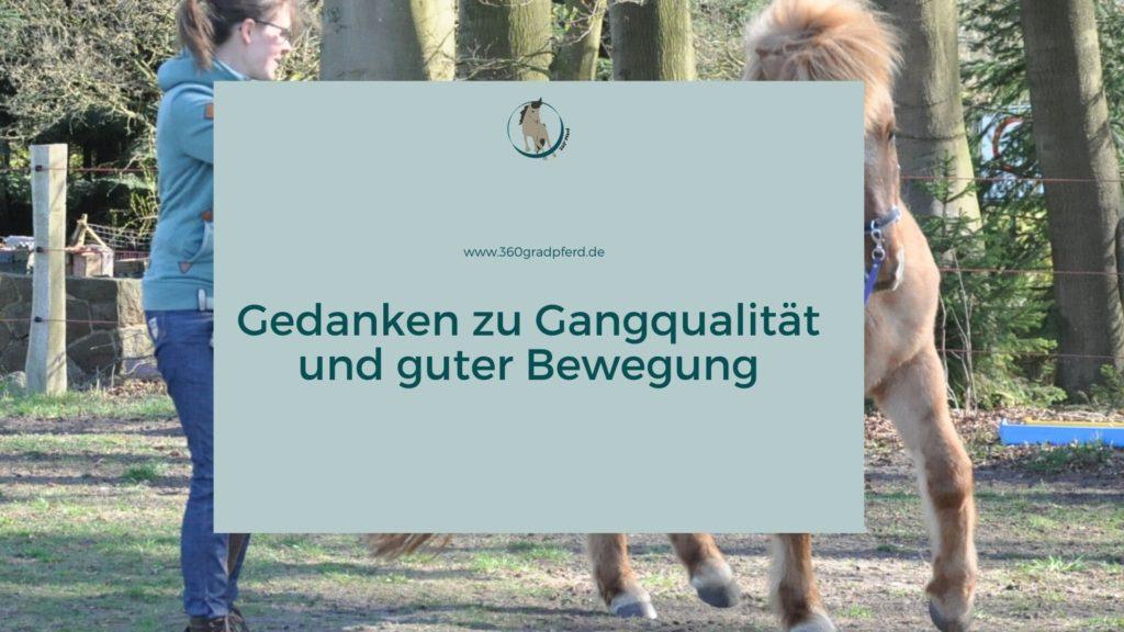 Gangqualität und gute Bewegung beim Pferd