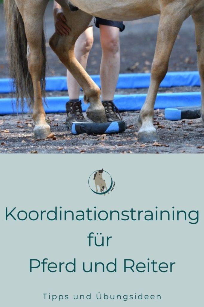 Koordinationstraining für Pferd und Reiter zur Verbesserung der eigenen Bewegungsqualität