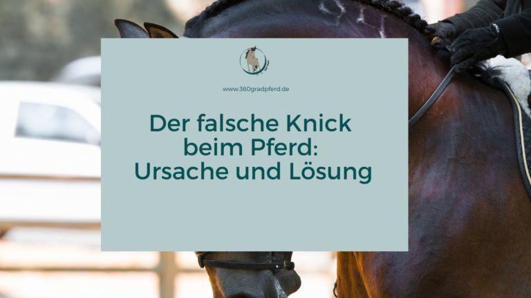 Der falsche Knick beim Pferd Ursache und Lösung