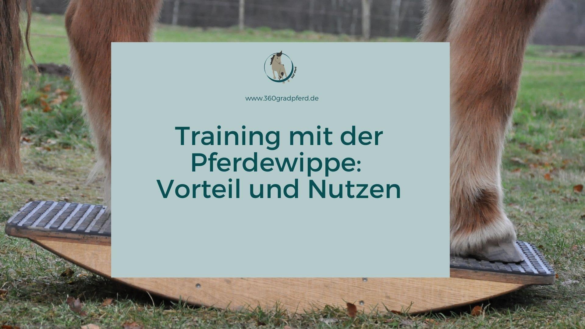 Training mit der Pferdewippe