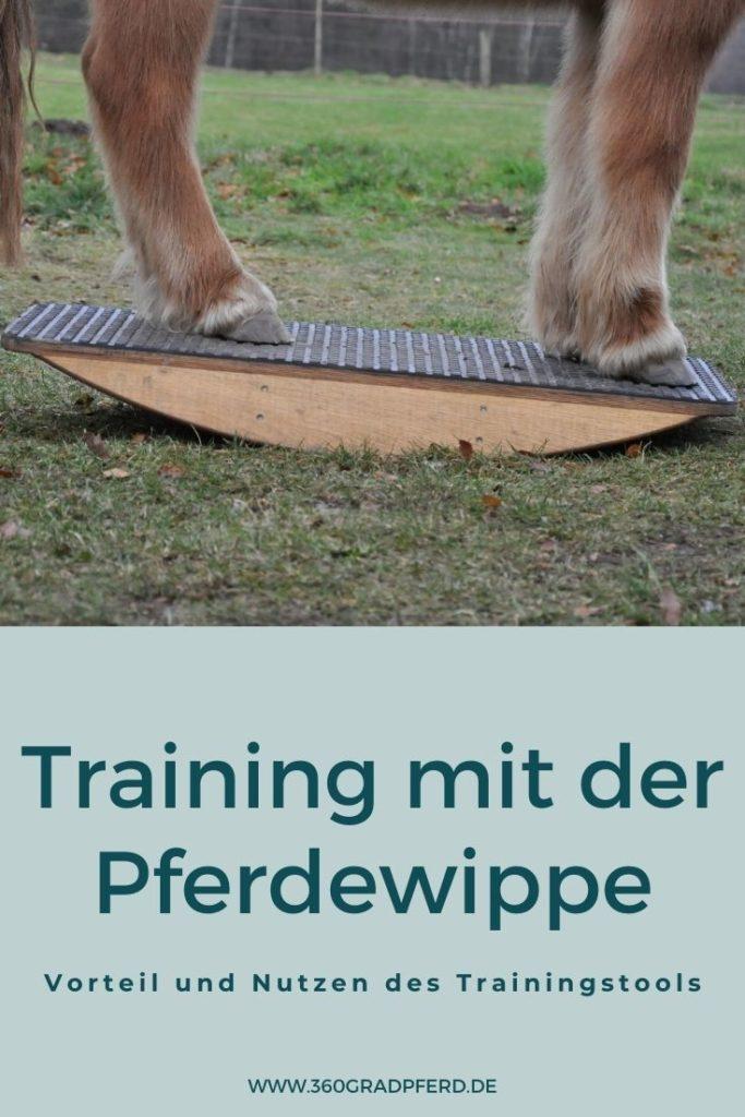 Vorteil und Nutzen des Trainings mit Pferdewippe