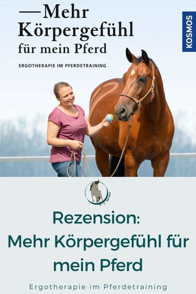 Buchtipp Mehr Körpergefühl für mein Pferd Ergotherapie im Pferdetraining