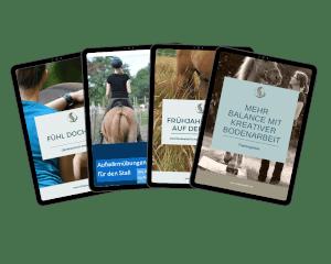 Vorschau kostenlose Onlinebibliothek