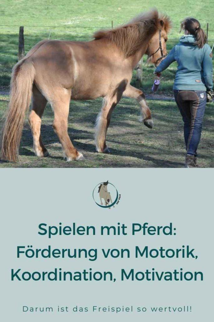 Freispiel mit Pferd