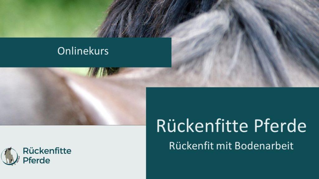 Cover Onlinekurs Rückenfitte Pferde