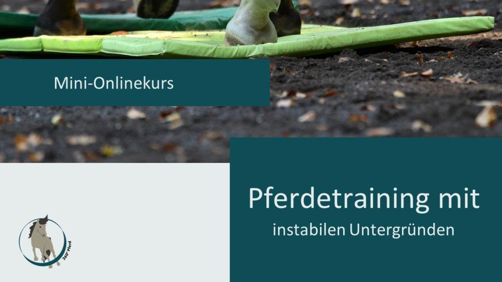 Cover_Mini_Onlinekurs_Pferdetraining_mit_instabilen_Untergruenden