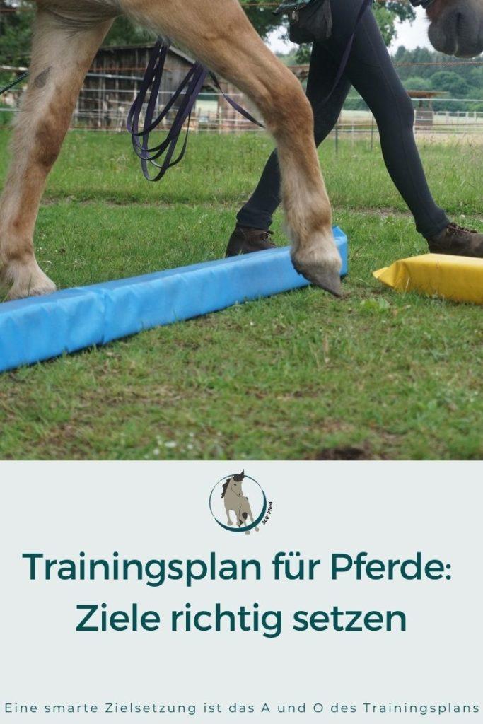 Eine smarte Zielsetzung als Grundlage eines erfolgreichen Trainingsplans