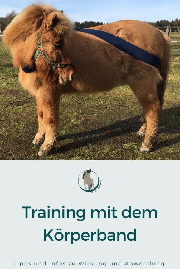 Pferdetraining mit Köperbandage