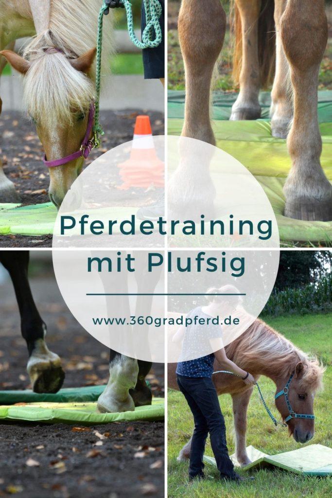 Pferdetraining mit Plufsig Turnmatte - Einsatzmöglichkeiten und Wirkung