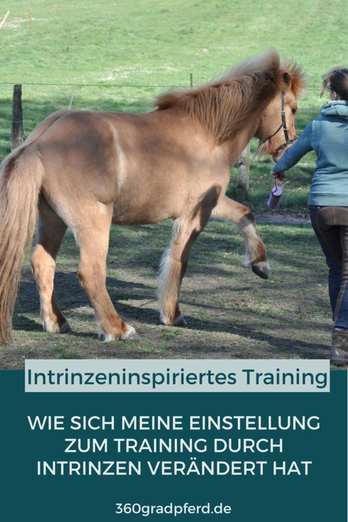 Intrinzeninspiriertes Pferdetraining verändert Bewegungsqualität und Bewegungsfreude