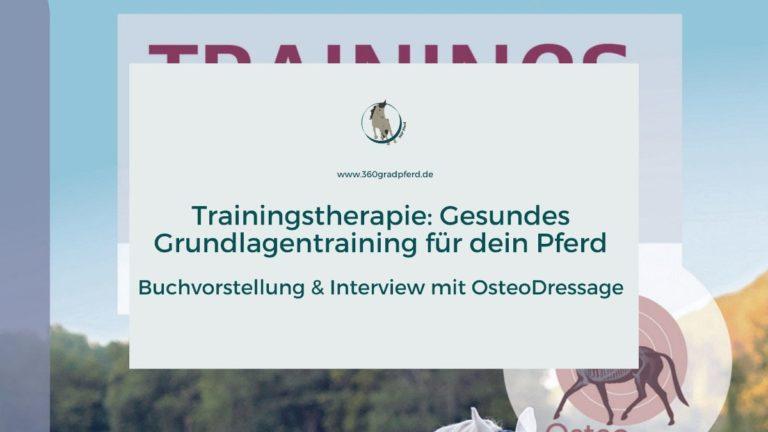 Trainingstherapie als gesundes Grundlagentraining für dein Pferd