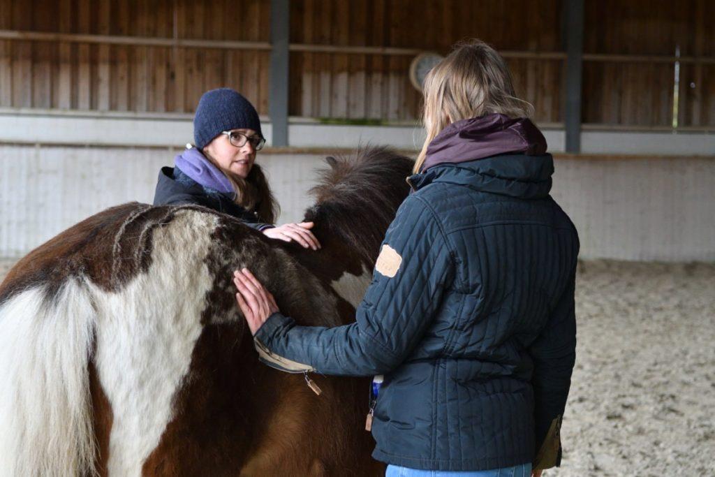 Gespräch mit Pferdebesitzer
